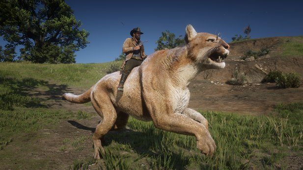 Riding cougars will also be part of the RDR2 mod, but are not yet finished.