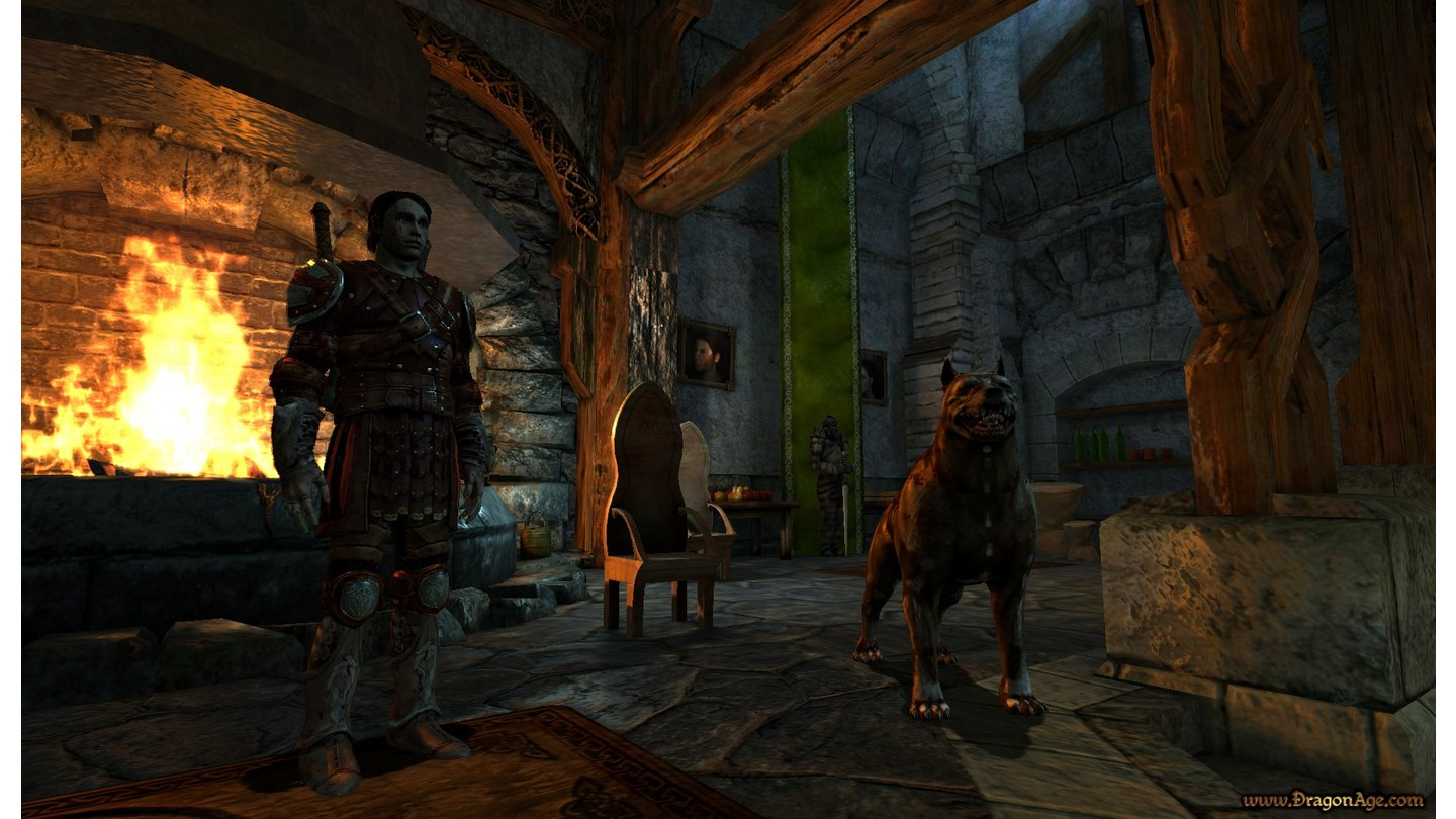 Dragon Age: Origins_5