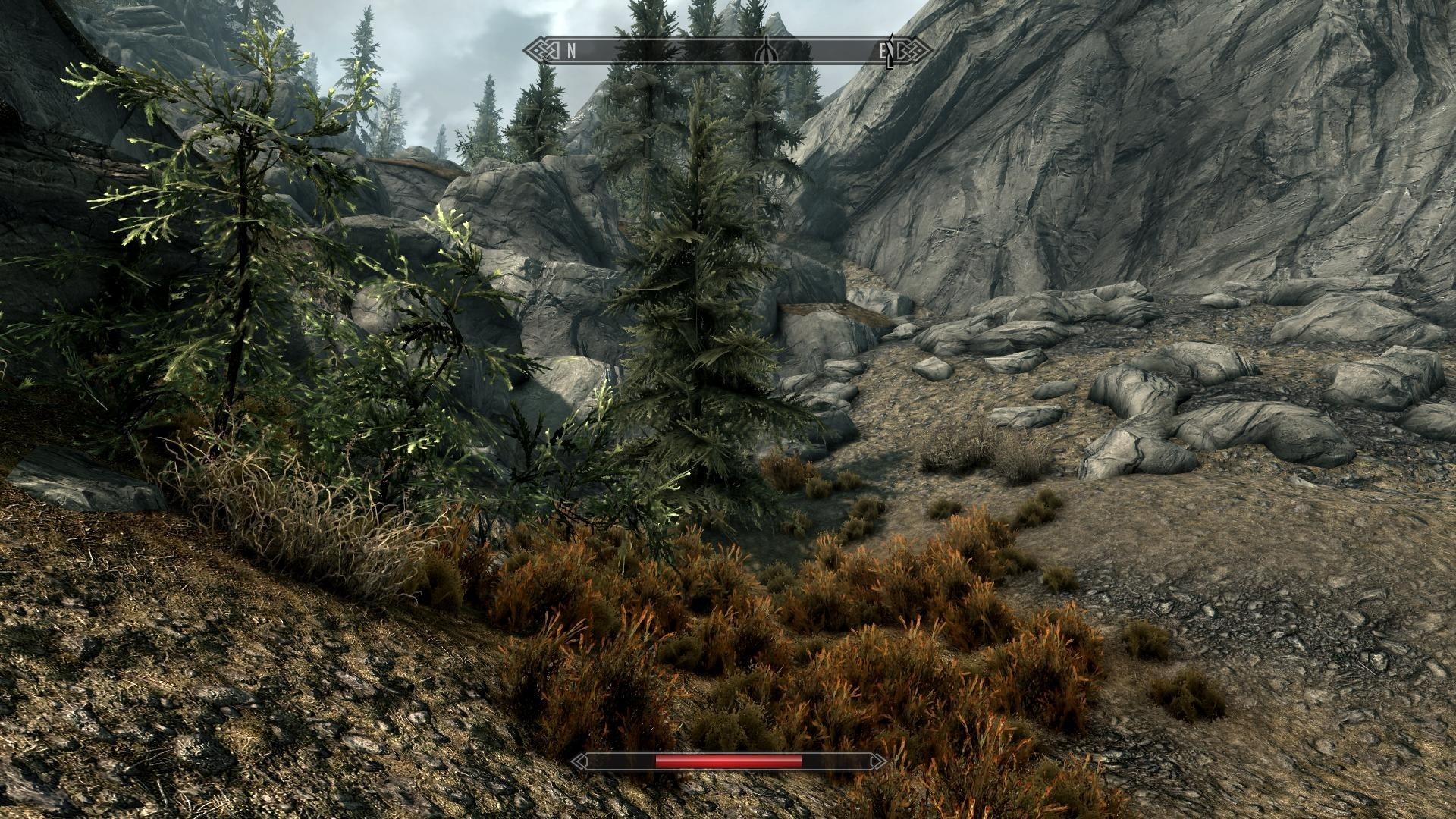 The Elder Scrolls 5: Skyrim tunen Grafik per Ini Datei und