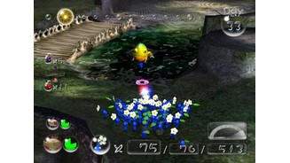 Blue Pikmin are useful in water-filled areas.