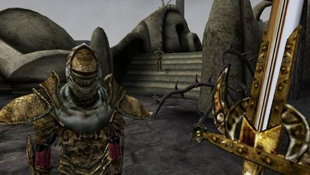 The Elder Scrolls 3: Morrowind - Todd Howard will kein Remaster, Skyrim war Ausnahme